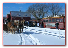 Winter Sleigh & Trolley